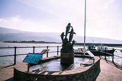Barmouth Harbour (Coed Celyn Photography) Tags: barmouth north wales gwynedd cymru gogledd snowdonia eryri coast coastline welsh abermaw mawddach bridge harbour marina harbor beach sand seaside sea coastal dolphins dolphin statue fountain quay
