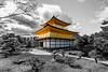 The Golden Temple (Mr.Lennox) Tags: goldentemple