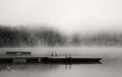 Silent Foggy Morning - 2387b+ (teagden) Tags: silent foggy morning misty dock water bw blackandwhite jenniferhall jenhall jenhallphotography landscape landscapephotography photography nikon britishcolumbia british columbia canada silence earlymorning peaceful dutchlake clearwater bc mood moody