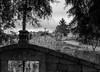 Cross Repetition (66/365) (Walimai.photo) Tags: black white blanco negro byn bw branco preto nikon 35mm nikkor d7000 cross cruz graveyard cementerio stone piedra texture textura
