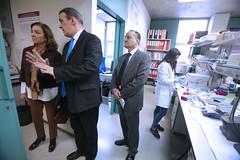 El Instituto de Biología y Genética Molecular de la UVa recibe  la visita de la Secretaria de Estado de I+D+i, Carmen Vela (universidaddevalladolid) Tags: institutodebiologíaygenéticamolecular uva visita secretariadeestadodeidi carmen vela