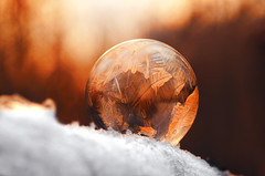 Ice ball (Pásztor András) Tags: forest winter tree frozen ice cold snow background nature outdoor ball sphere white snowy red closeup frost snowflake covered season trees light color branch evening round natural peaceful calm details colorful sunset dusk sun sky christmasball pattern crystal wood shiny abstract scene art circle sunlight frosty flicker mood wallpaper beauty reflection transparent natur weather beautiful madeofsnow focus vibrantsigma 105mm bokeh dslr nikon d5100 hungary andras pasztor photography 2017