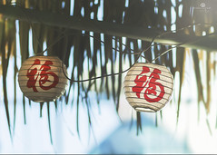year of the dog (rockinmonique) Tags: chinesenewyear palapa light sun blue green red lanterns moniquew canont6s canon tamron tamron45mm copyright2018moniquewphotography