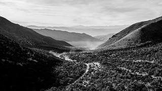 Dusty Wildrose @ Death Valley