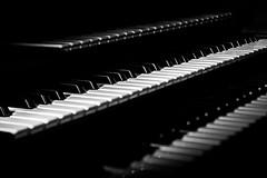 Organ Keys - Tilt shift (yorgasor) Tags: organ hasselblad planar80mm titlshift lowrey