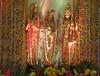 IMG_8307 (mohandep) Tags: pondicherry friends kavya travel india cities flowers plants trees landmarks signs humour