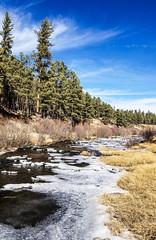 Freezing East Fork (Buck--Fever) Tags: easternarizona eastforkblackriverarizona freezing water stream arizona arizonaskies whitemountains whitemountainsarizona bluesky blue landscape nature pinetree cold