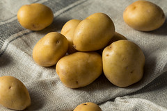 Raw Organic Yellow Baby Potatoes (brent.hofacker) Tags: agriculture babypotato babypotatoes background brown carbohydrate cook cooking diet farming food fresh group harvest health healthy heap ingredient nature nutrition organic pile potato potatoes raw root starch sweet tasty tuber uncooked vegan vegetable vegetarian whole yellow yellowbabypotato yellowbabypotatoes yellowpotato yellowpotatoes