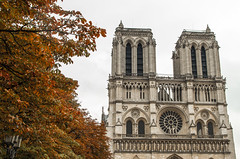 Quasimodo, where are you? (damar47) Tags: parigi paris french france francia pentax pentaxart pentaxk30 pentaxian notredame colori colors leaves gothic tree trees cathedral church cattedrale chiesa architecture architettura historical