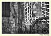 Trompe l'oeil ! Fan ou pas? :D ;-) / Optical illusion ! Fan or not? : D ;-) (Thierry De Neys - Photographies) Tags: thierrydeneys gérardmer vosges france frankrijk trompeloeil opticalillusion bokeh roue stoelspoor chairrail cimaise lierre klimop ivy nb bw noiretblanc blackanbwhite volet shutter klep rayon moyeu hub naaf beam straal mur wall muur perspective perspectief graphisme graphics grafiek