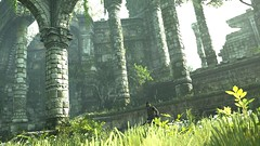 UPPER GARDEN (Ninjerello) Tags: shadowofthecolossus sotc remake wallpapers bluepointgames wanderer agro colossus colossi photomode ps4 sonyjapanstudios bestscreenshot