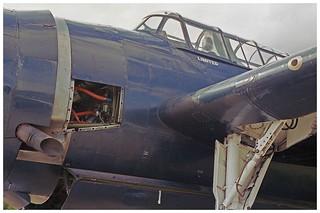 Hellcat Kodak color 400