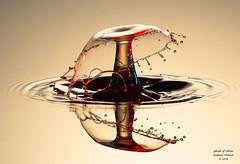 A Splash of Colour. (Graham R Watson) Tags: liquid highspeed splash waterart macro splashart waterdroplet
