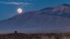 Big Moon Rising (MTD Photos) Tags: newmexico sandia sandiamountains desert fullmoon landscape mattdomonkos moon moonrise mountain nature night sky sunset supermoon