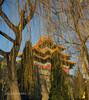 Chine (louis.labbez) Tags: chine ville china town labbez asie asia pékin beijing cité interdite palais palace empereur rouge red