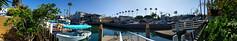 Back Yard - Newport Beach, California (BeerAndLoathing) Tags: water california usa android roadtrip trips summer californiatrip googleandroid july nexus6p 2016 google newportbeach unitedstates us