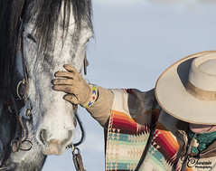 CodyWU_012318_1318 (Roni Chastain Photography) Tags: horses wyoming thehideoutranch wranglers big sky snow winter horse ridershorses west westernwear western