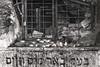 The Underground Tomb of the 'Beer Mayim Chaim' (tatzlum.photo) Tags: tzion candle memorial jew tomb cave eretzyisroel tzefat judaism religion mausoleum israel jewish grave petition 50mm blackandwhite selectivecolour monochrome