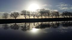Kanaal door Walcheren (Omroep Zeeland) Tags: middelburg natuurlandschap december2016
