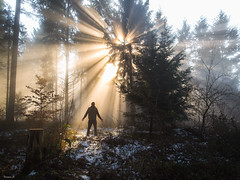 A day like no other (Eifeltopia) Tags: sunbeams sonnenstrahlen wald forest trees rheinlandpfalz morning snow meteorite frosty mood person enjoy rays sunburst hands