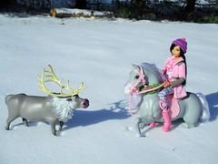 Winter Stroll (flores272) Tags: barbiehorse polkadotfun barbie barbiedoll winter frozen sven svenreindeer outdoors madetomovebarbie
