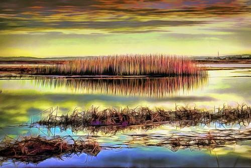Salt Marsh at Sunset Landscape