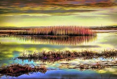 Salt Marsh at Sunset Landscape (Rusty Russ) Tags: salt marsh reeds sky water contrast new improved plum island ma colorful day digital window flickr country bright happy colour eos scenic america world sunset beach red nature blue white tree green art light sun cloud park landscape summer city yellow people old photoshop google bing yahoo stumbleupon getty national geographic creative composite manipulation hue pinterest blog twitter comons wiki pixel artistic topaz filter on1 sunshine image reddit