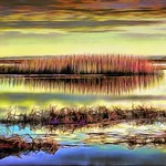 Salt Marsh at Sunset Landscape thumbnail
