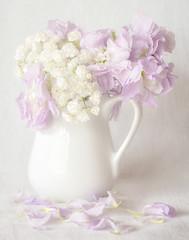 White Pitcher (Jeff Milsteen) Tags: pitcher still life flowers babys breath white petals pastel milsteen