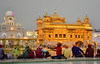Le Temple d'Or /   the Golden Temple - Amritsar (Make our PLANET great again !) Tags: inde india punjab amritsar templedor goldentemple sikhisme sikhs pèlerins temple or gold nikon soir evening lumière light