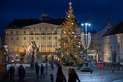 Brno at Night (romanboed) Tags: leica m 240 summilux 50 europe czech republic czechia moravia brno travel architecture night winter christmas city cityscape street square outside tree