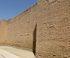 Western Wall lower Ishtar Gate, Babylon (2).jpg (tobeytravels) Tags: iraq babylon babel mesopotamia akkadian amorite hammurabi assyrian neobabylonian hanginggardens achaemenid seleucid parthian roman sassanid alexanderthegreat nebuchadnezzar sargon chaldean hittites sennacherib xerxes