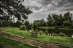 Unknown Genre (Don Price (jr)) Tags: clouds reflections pond water garden trees ef2470mmf28liiusm universityofalbertadevonianbotanicgarden benchmonday hbm monday bench 6d canon
