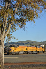 EMD's knocking around the bottoms (CN Southwell) Tags: up union pacific benicia california gp15 gp382 gp402