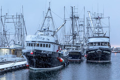 Brrrr (Paul Rioux) Tags: marine marina waterfront pier fishermanswharf fishingvillage dock frenchcreek fish boat boats vessels commercial snow frost cold winter season wind blowing morning daybreak parksville bc prioux