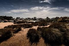Trégastel... (De l'autre côté du mirOir...) Tags: trégastel côtesdarmor côtedegranitrose plage sable bretagne breizh bzh brittany fr france french nikon nikkor d810 nikond810 paysage ciel 240700mmf28