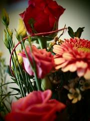 Der Blumenstrauß (jodage) Tags: blumenstraus blumen olympuspenliteepl6 olympusepl6 olympus25mm