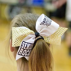 "AHS-ASH-Feb23-Cheer2 - 1 • <a style=""font-size:0.8em;"" href=""http://www.flickr.com/photos/71411111@N02/38787810920/"" target=""_blank"">View on Flickr</a>"