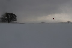 No golf today (A Costigan) Tags: golf golfcourse winter snow tree flag redflag weather outdoor storm snowstorm cartonhouse canon80d ireland