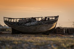 Sailing on a bokeh sea (James Waghorn) Tags: wreck bokeh goldenhour beach nikon d7100 bird tamronsp70300f456vcusd pebbles kent dungeness winter england