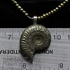 #20 pyrite ammonite from Russia (zawaski) Tags: ammolite ammonite gemstone ©zawaski2018 alberta rare 4sale fengshui fossile 75millionyearsold older presious colour jewelery finesilver sterling silver 925 beautiful value love peace