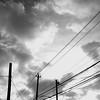 Levy Park Power Lines, Houston, Texas (Mabry Campbell) Tags: houston levypark texas usa blackandwhite image minimal minimalism photo photograph powerlines squarecrop f20 mabrycampbell november 2017 november62017 20171106campbelldscf0057 23mm ¹⁄₈₀₀₀sec 200 xf23mmf2rwr