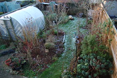 Looking Down on the Back Garden - January 2018 (basswulf) Tags: backgarden polytunnel d40 1855mmf3556g lenstagged unmodified 32 image:ratio=32 permissions:licence=c 20180117 201801 3008x2000 lookingdownonthegarden garden normcres oxford england uk