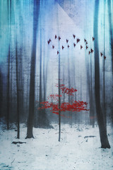 fading into winter (Dyrk.Wyst) Tags: deutschland germany schnee winter wuppertal cold fog iphone6s landscape misty nature outdoor snow trees wet woodland trevillion similar nordrheinwestfalen de
