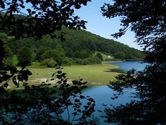 asómate, descubre (era.creative) Tags: navarra nature window views paisaje naturaleza