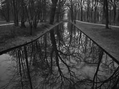 Spiegelbild (lebastian) Tags: reflection spiegelung lumix g panasonic dmcgx8 olympus m1240mm f28