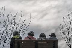 景美溪畔-朋友 (Autumn017) Tags: people taiwan riverside women sky clouds gray cherry tree friends chair