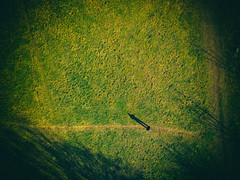 Selfie by spark (Petr Kleiner) Tags: spark dji dron selfie green man fly road