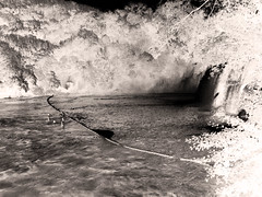Comme dans un rève... (busylvie) Tags: noiretblanc chutesdeptika croatie baigneurs cascade arbres postprocessing blackwhitepassionaward