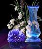Blue and white (jaci XIII) Tags: azul branco flores vidro vaso blue flowers glass vase white